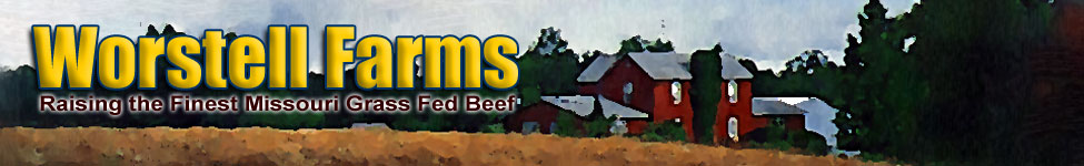 Missouri Beef Cuts Steak Ribs Hamburger Ground Roast Tenderloin Meat